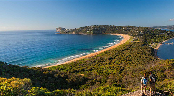 Northern Beaches Lunch Tour